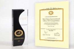 2014 – Bronze Oil Award – China International Oil Competition
