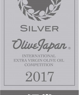 2017 – SilverOlive Japan – International Competition
